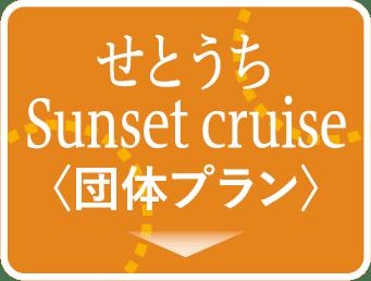 貸切空間で夕日を眺める贅沢せとうちSunset cruise〈10名~30名様向けの団体プラン〉